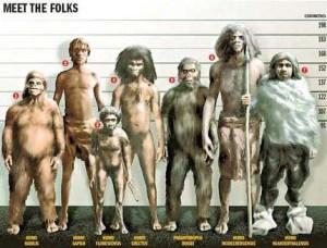 f7d9e-hominidos